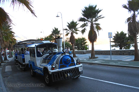 tropical express small train in almuñecar promenade