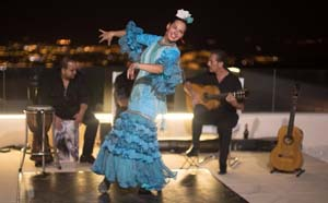 flamenco performance by a professional dancer