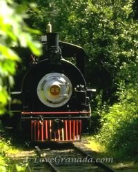 old train in the forest